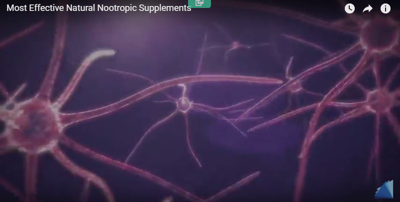 What are the Best Nootropics? – best brain supplements review