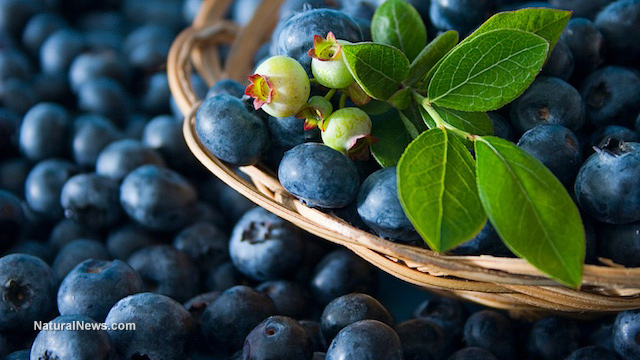 7 Reasons why you should start eating more blueberries