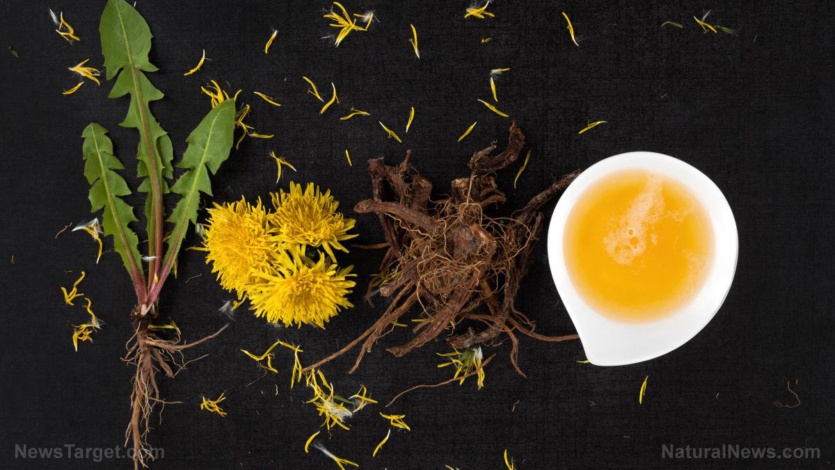 Heal your thyroid with dandelion… and 9 other powerful tonics to try