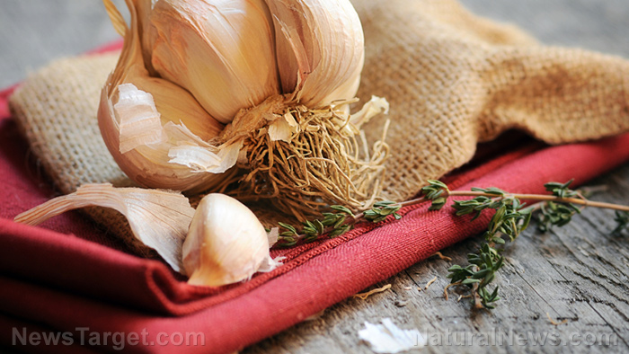 Aged garlic extract reduces low-grade inflammation in obese people