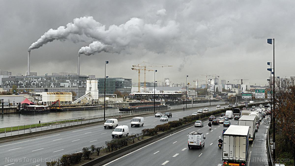 Living in a polluted city increases the risk for Alzheimer's and suicide among children and young adults