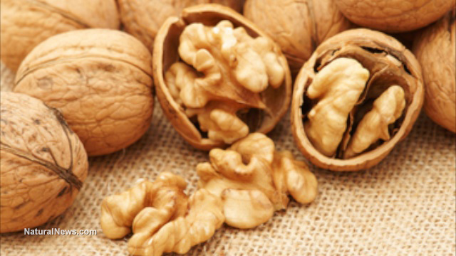 Walnuts boost your health by increasing the number of good bacteria in your gut
