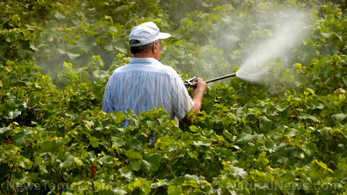 Even low-level exposure to pesticides increases your risk of Parkinson's