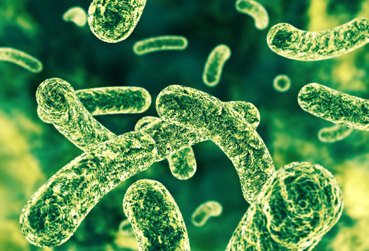 Taking probiotics can reduce symptoms of depression