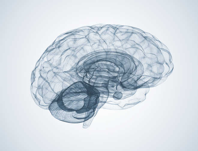 Brain zapping during sleep may boost memory