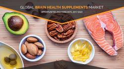 Brain Health Supplements Market Perspectives, Issues, and Opportunities