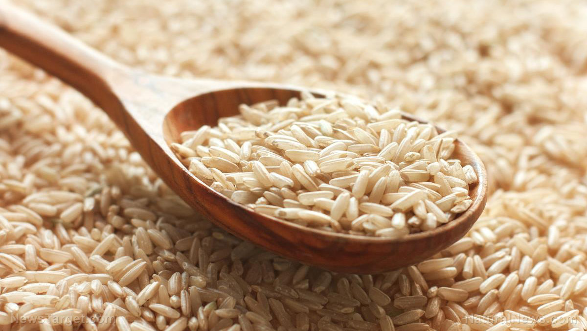 Food for thought: Brown rice reduces cognitive dysfunction linked to Alzheimer's