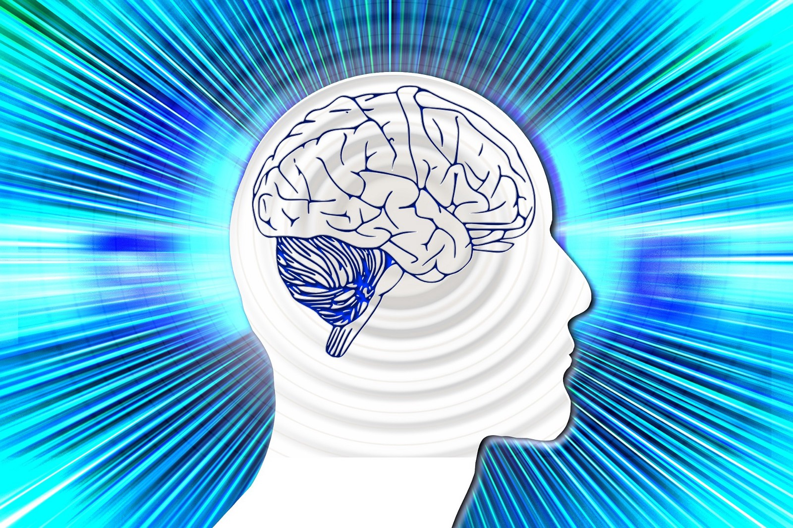 """The Surprising Fitness Supplement That Can Help You """"Bulk Up"""" Your Brain Power"""