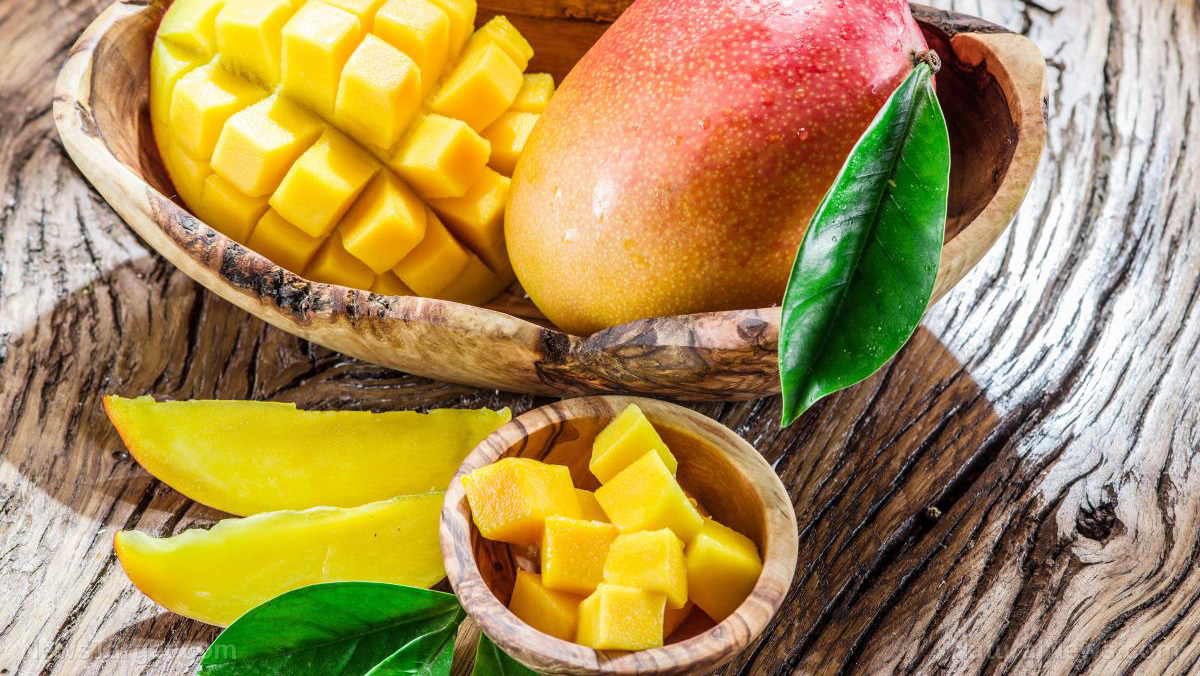Eating a mango every day prevents constipation