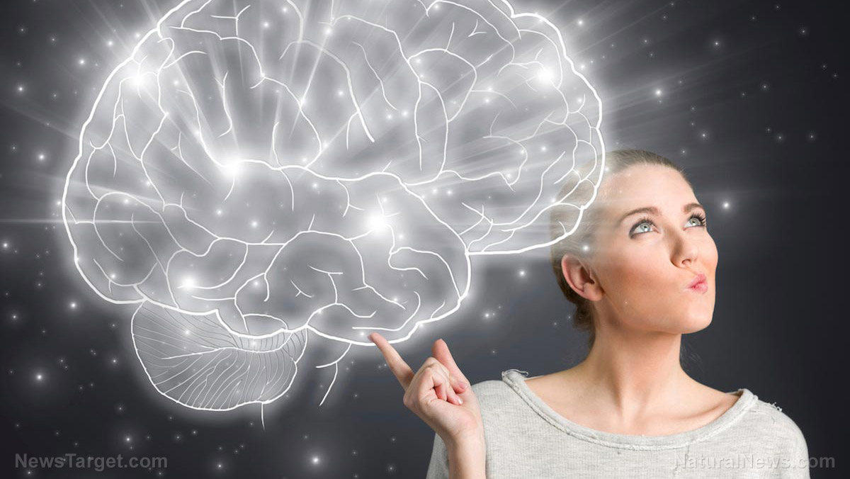 Simple exercises that increase your intelligence gradually