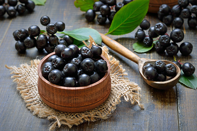 Move over blueberries, the chokeberry contains high concentrations of antioxidants that protect your brain from damage