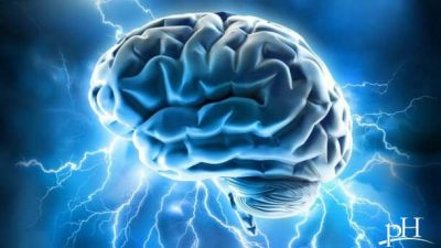 Brain Supplements That Increase Focus and Concentration