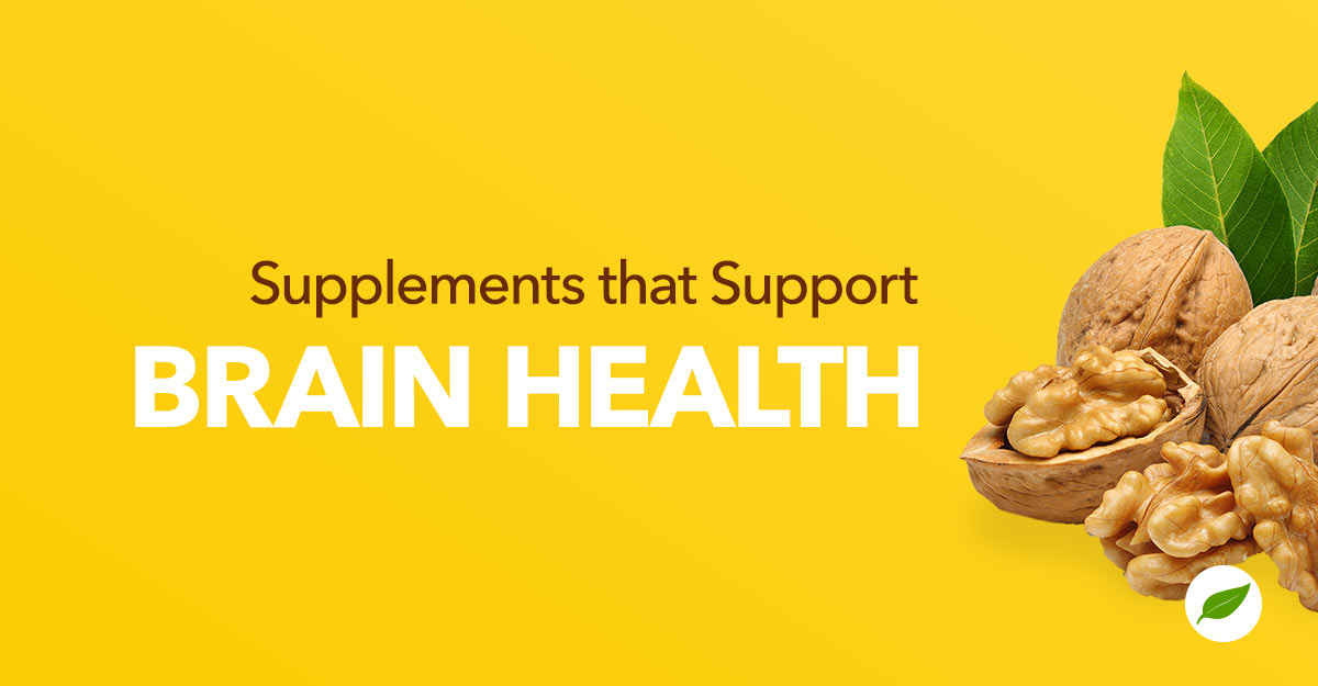 How Brain Supplements Support Your Memory, Cognition, and Focus