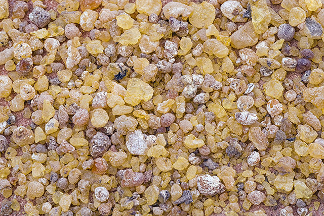 Boswellia is a powerful anti-inflammatory herbal extract that can prevent cancer