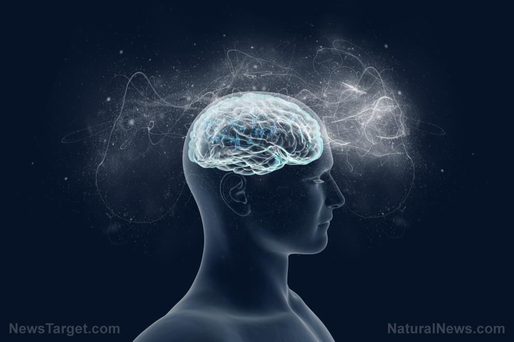 Simple ways to protect your brain from neurotoxicity