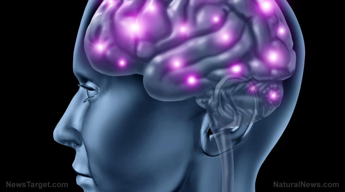 Here's why you should be paying more attention to citicoline, a naturally occurring compound that's important for brain health