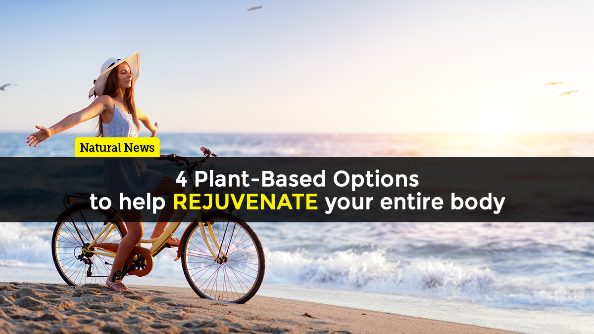 Four plant-based options to help rejuvenate your entire body