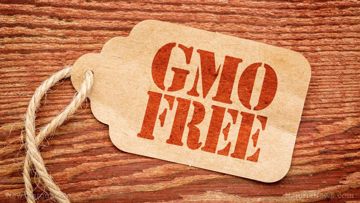 STUNNING: Removing GMO foods from your diet can improve 28 different health conditions