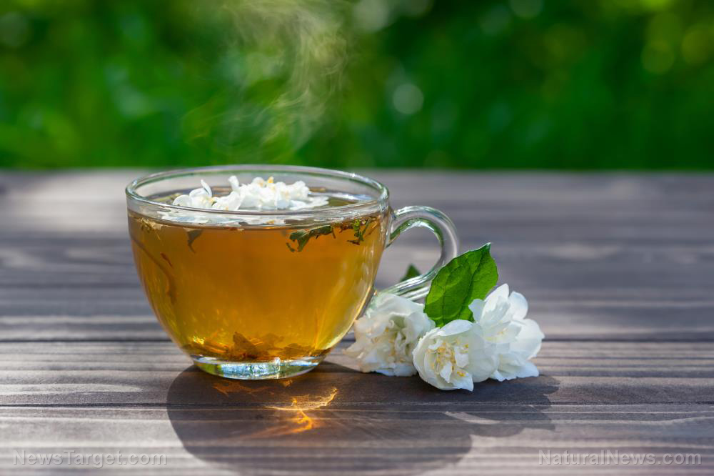 You really should be drinking more organic tea: They have more nutrients than conventional ones