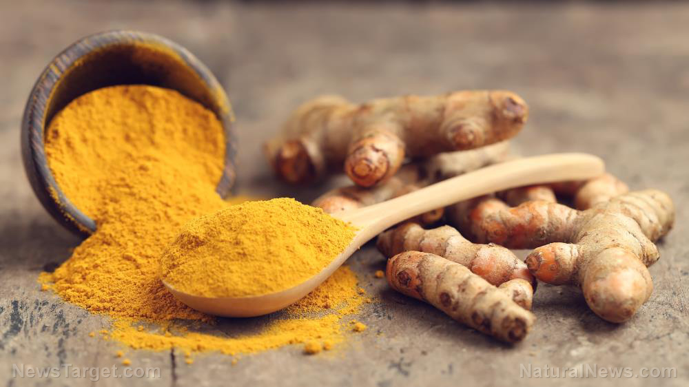 Compelling study confirms the therapeutic effects of curcumin in removing fluoride from our bodies