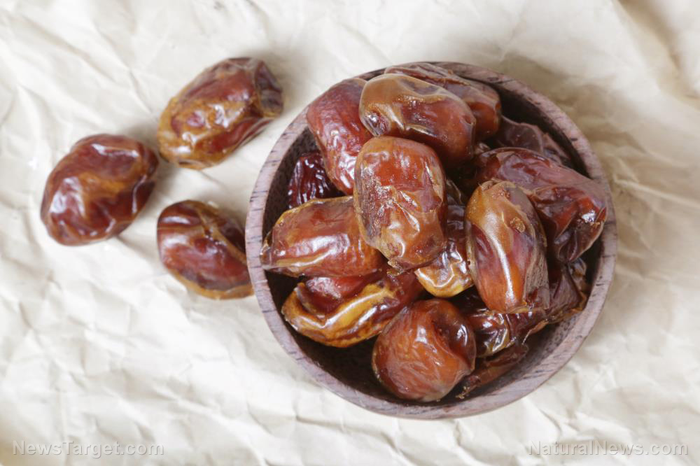 The date palm found to increase sperm count and motility