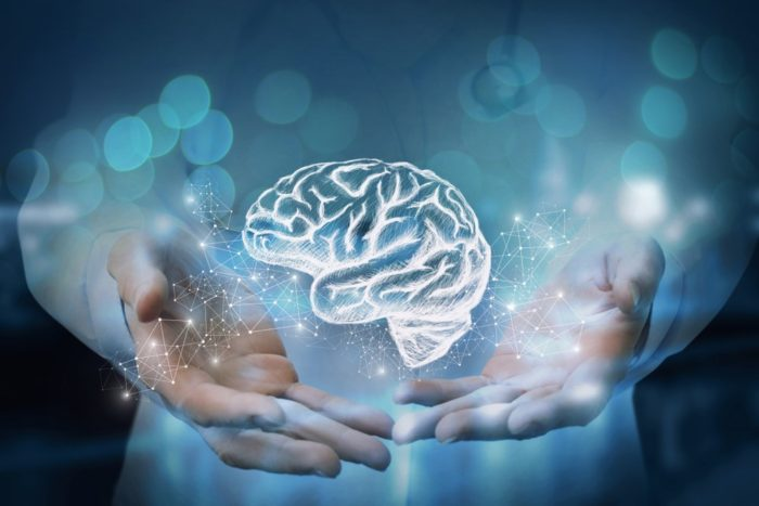 Provasil Review: Is This the Best Nootropic Supplement to Boost Your Memory?