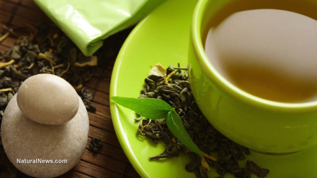 Overweight women greatly benefit from drinking green tea