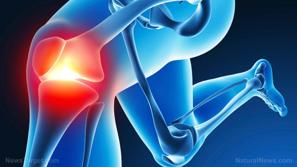 Knee surgery — bad for the brain? One in five older adults suffer weakening of brain networks after joint replacement