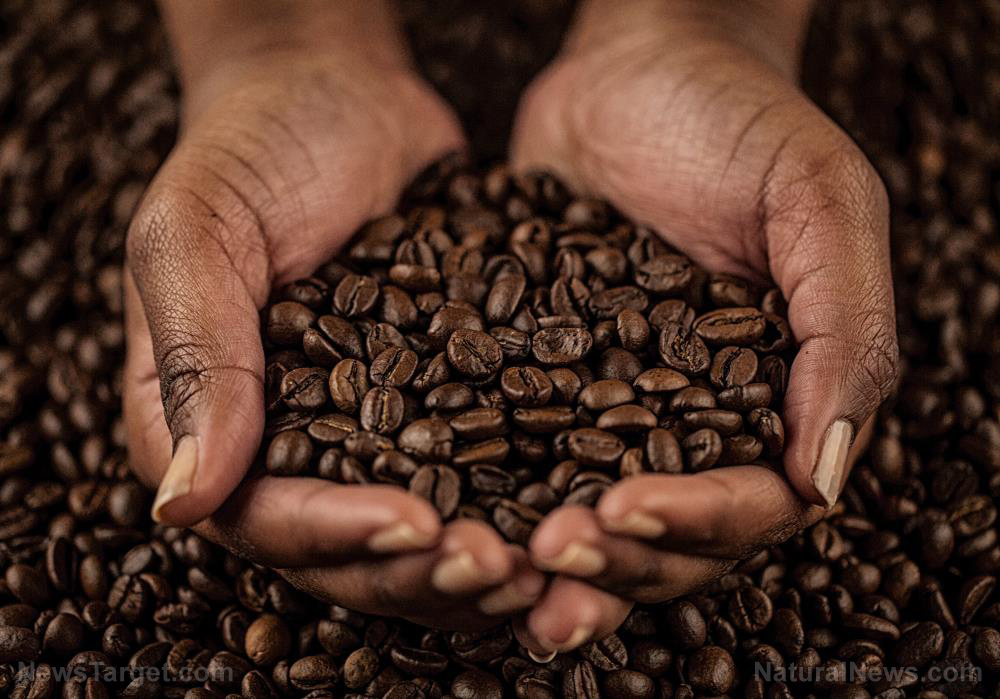 Compounds in coffee found to fight off Parkinson's and Lewy body dementia