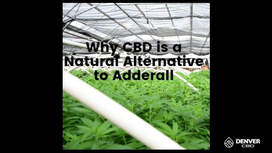 Why CBD is a Natural Alternative to Adderall