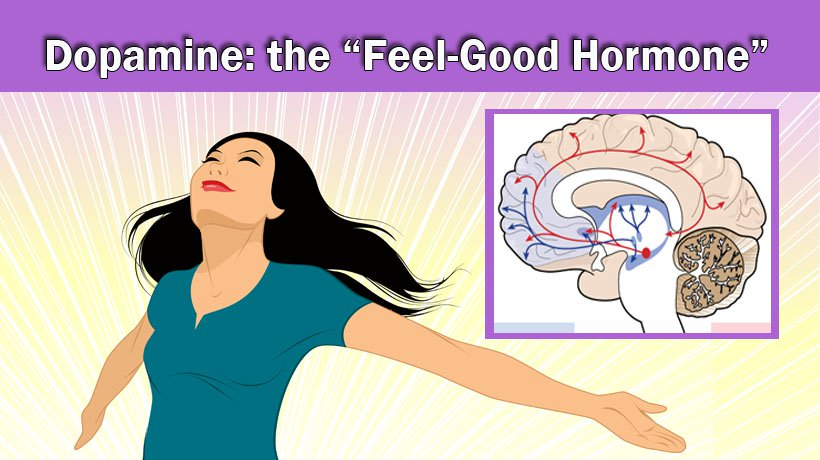 """9 Ways to Boost Your Dopamine, the """"Feel-Good Hormone"""""""