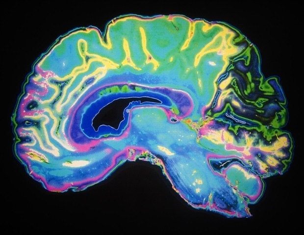 Artificial neural networks can predict how different areas in the brain respond to words