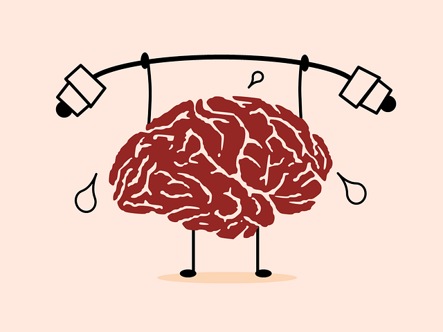 Neurogenesis: Why You Should Exercise Before (Not After) You Learn