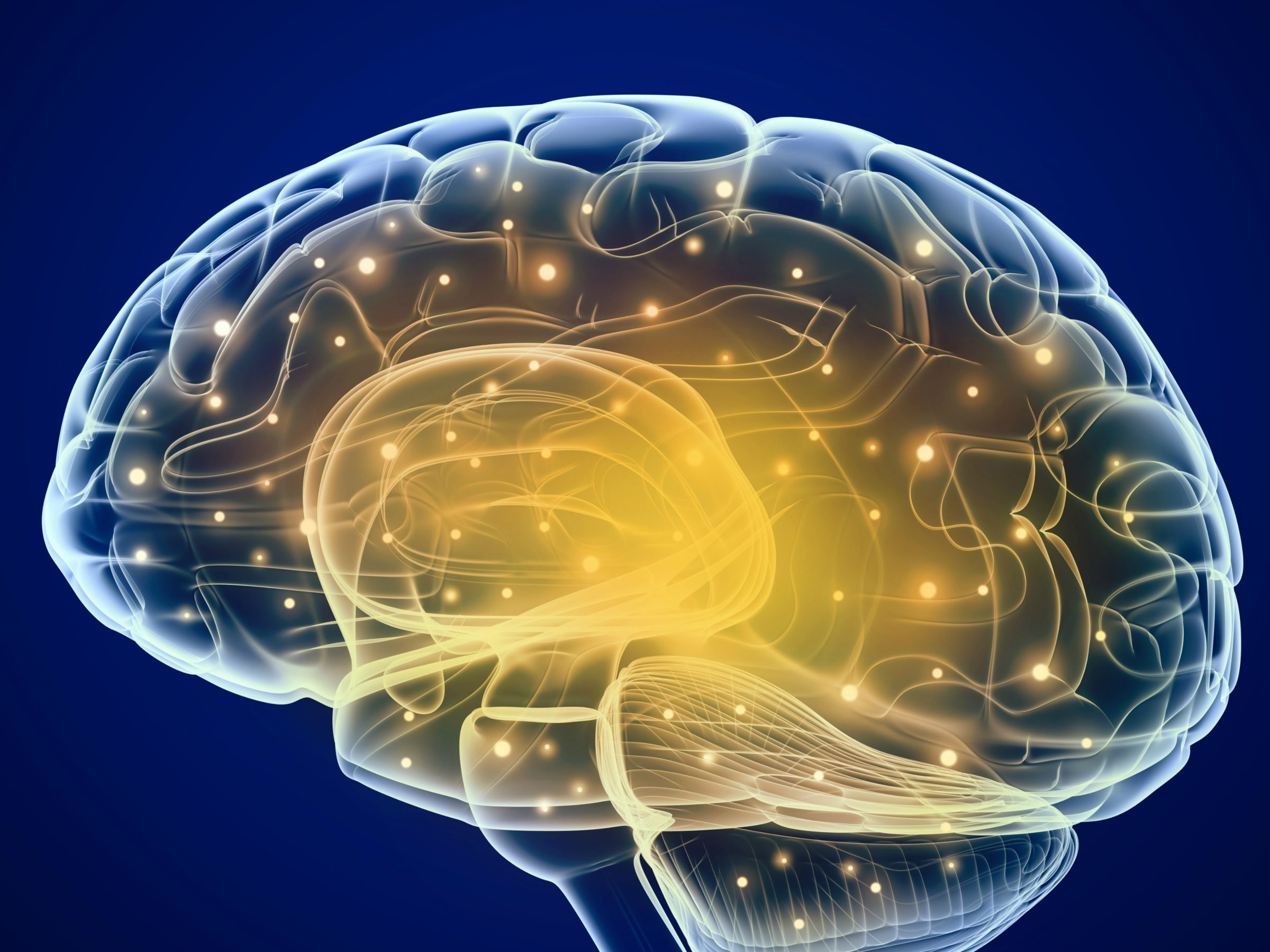 Easy Tips To Boost Intelligence