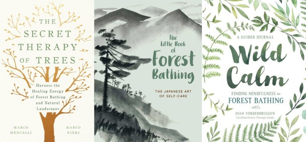 Forest Bathing Strikes a Chord with Exhausted City Dwellers