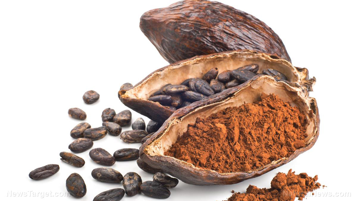 Go for the original: Cacao offers more health benefits than regular chocolate