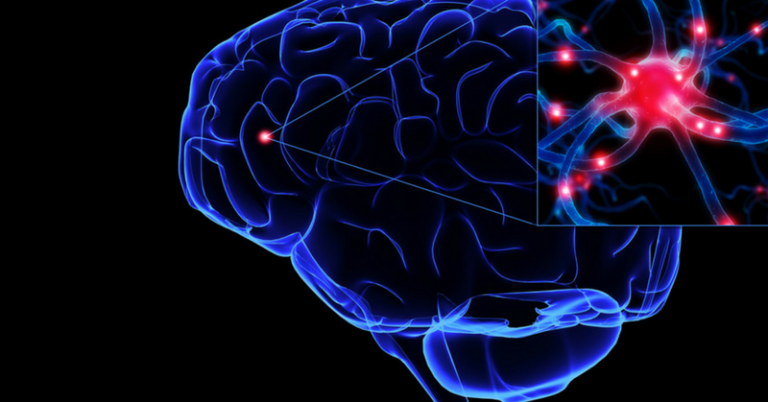 Tips On How To Increase The Serotonin In Your Brain Naturally
