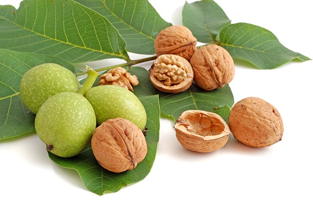 The nutritional content and health benefits of pecans and walnuts