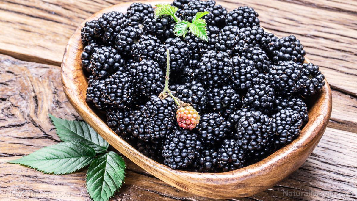 Rich in health benefits, enjoy blackberries all year