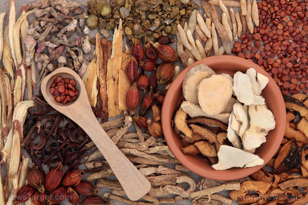 Herbal remedies from traditional Chinese medicine found to effectively treat Alzheimer's disease