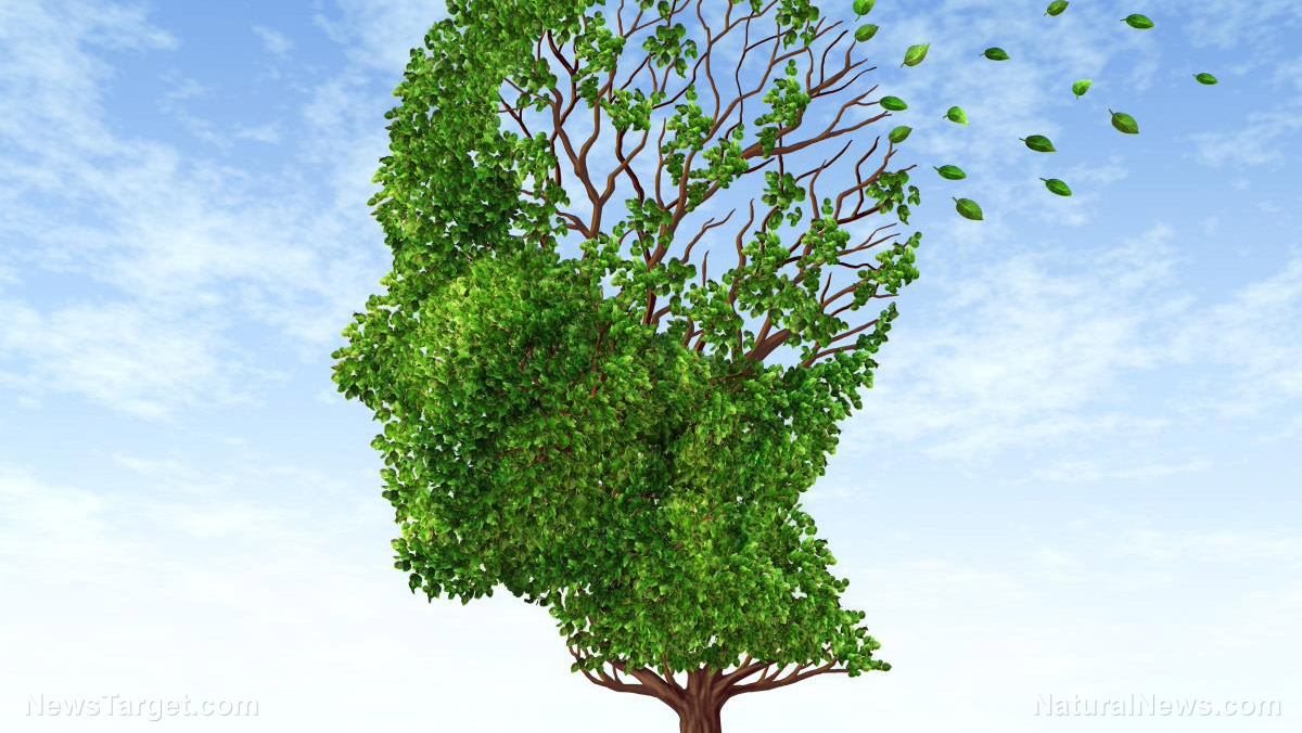 Could dementia be just another manifestation of chronic inflammation?