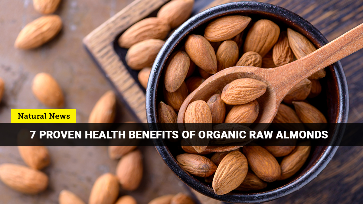 Here are the best reasons why you should go nuts with organic almonds