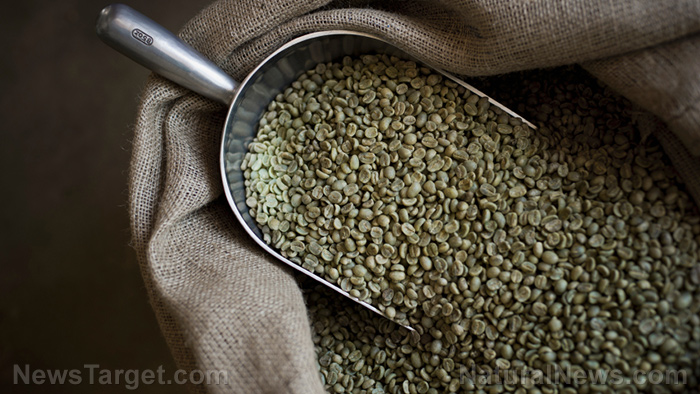 Learn more about the health benefits of chlorogenic acid, the active ingredient in green coffee