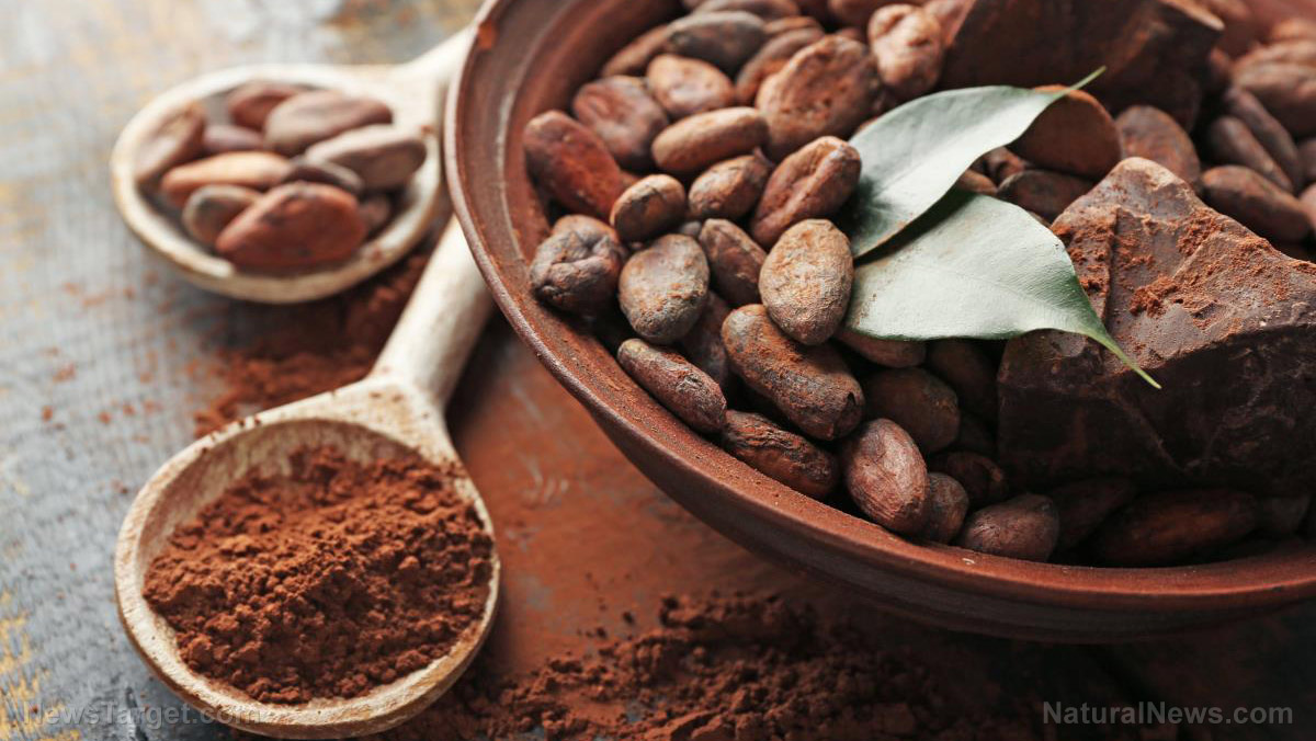 Can you add chocolate to a keto diet?