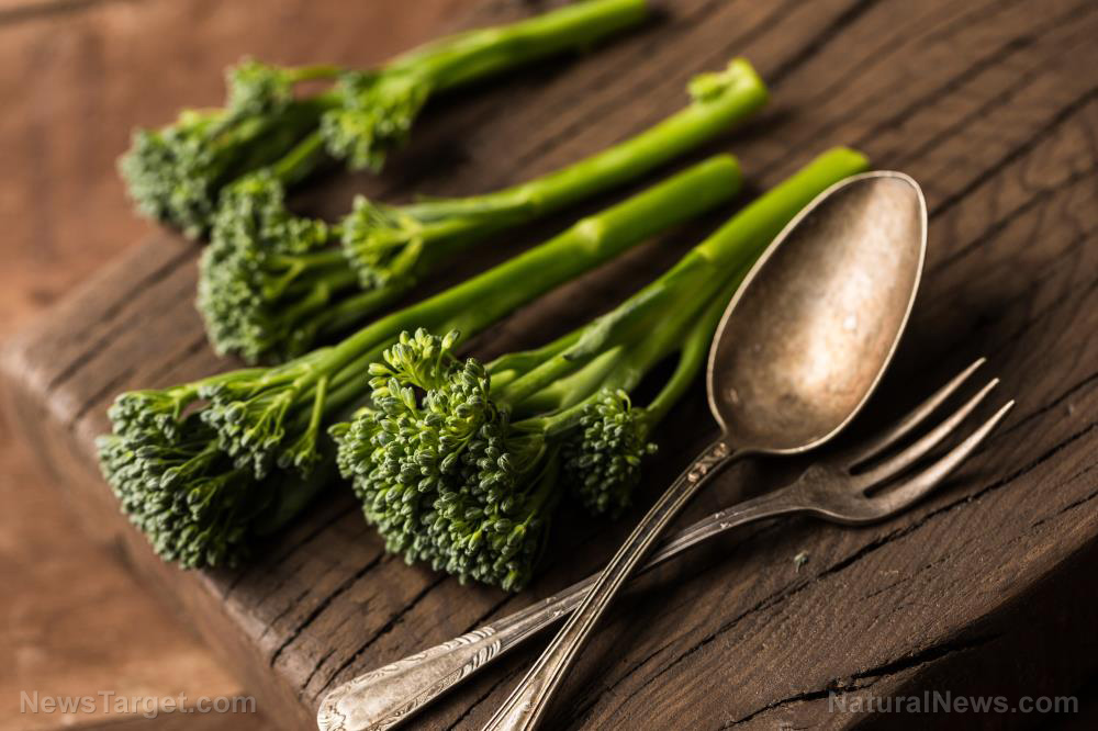 Eating broccoli found to help with brain and nerve repair