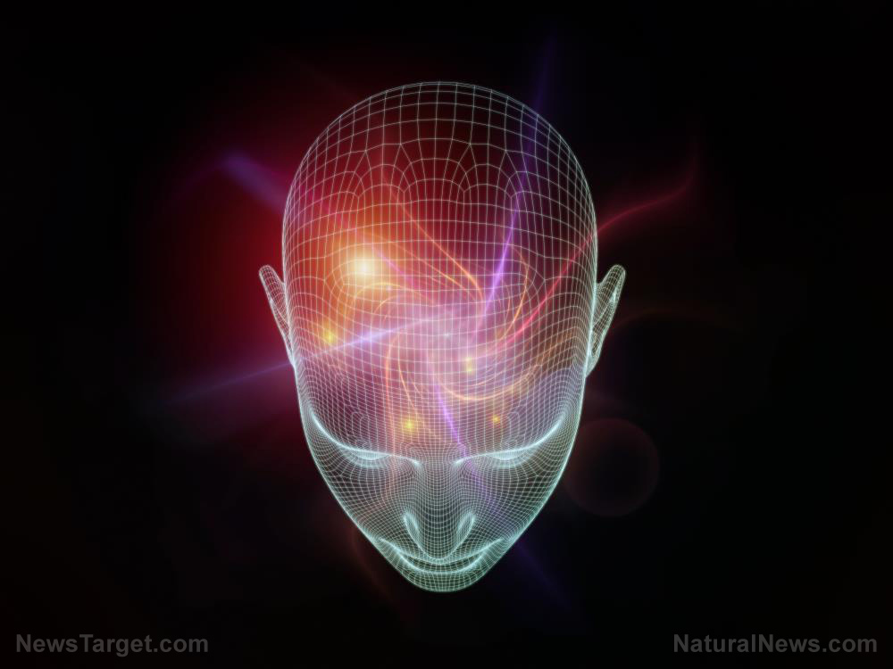Novel finding suggests magnets can improve working memory