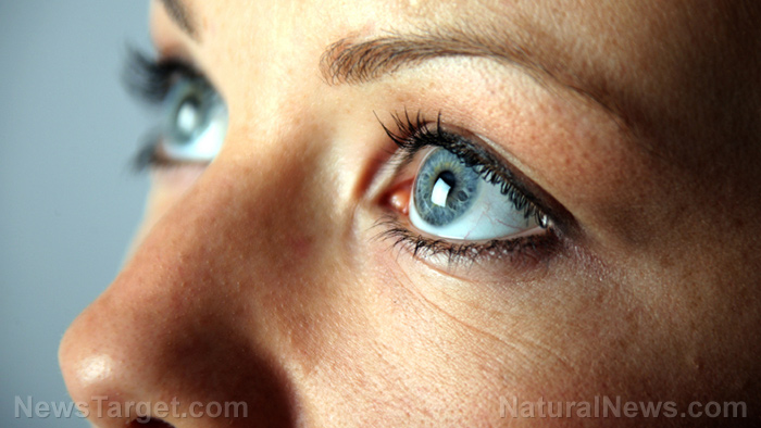 Not just for the eyes: Lutein also boosts memory, says study