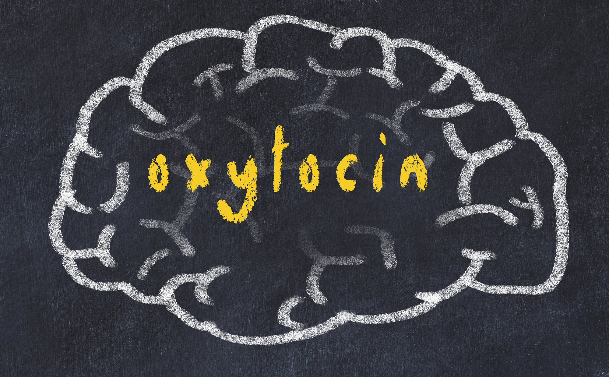 Oxytocin Genes (OXTR) & SNPs: Are You High or Low in it?