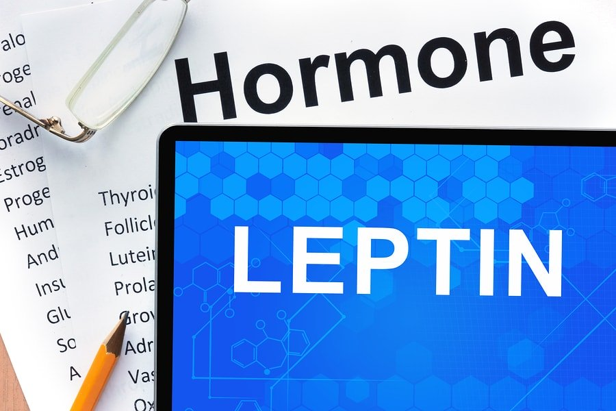 Leptin Deficiency & Factors that Increase Leptin