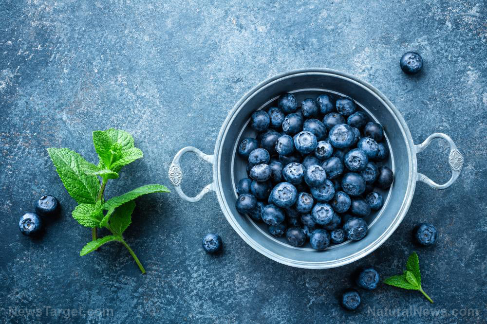 Blueberries are more effective at killing cancer than radiotherapy